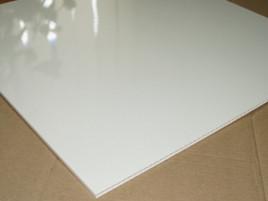 Плита пластиковая Riko белая 600x600x7
